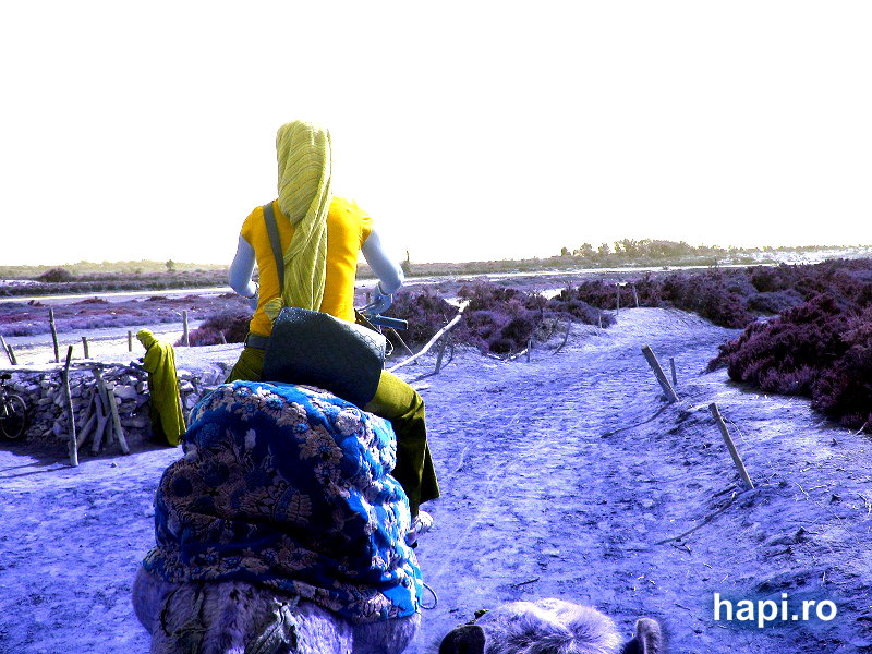 Relaxează-te cu poze din deșert