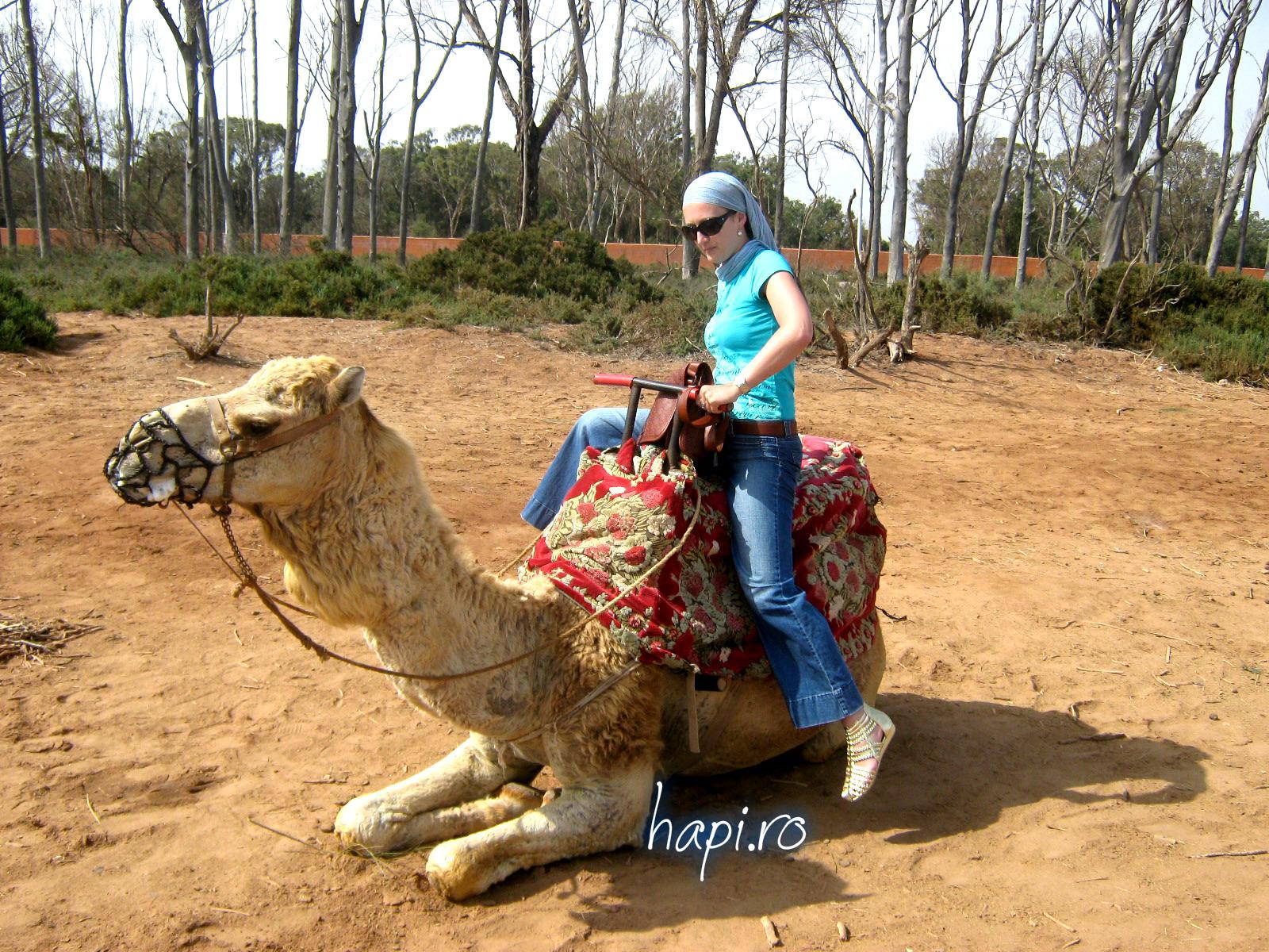 Cât de sigur e turismul în Maroc în 2016?